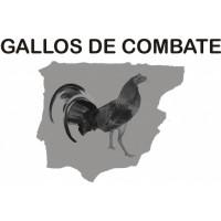 Gallos Combatientes